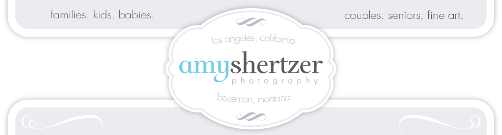 Amy Shertzer Photography | Los Angeles Photographer logo